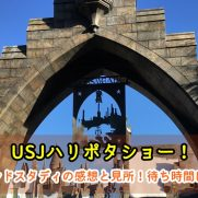 USJ ハリポタ ワンドスタディ