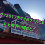 USJエヴァ2017おすすめグッズとお菓子!お土産売り場はどこ?