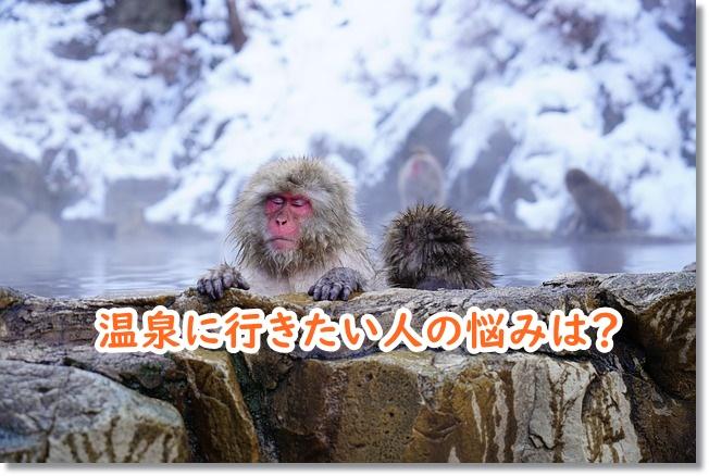 サル 温泉