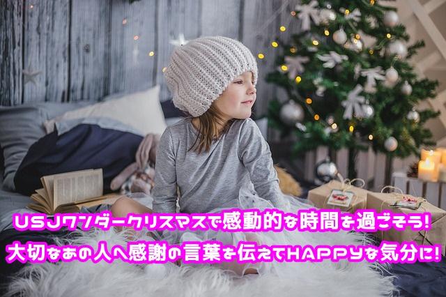 USJ ワンダークリスマス ベネフィット